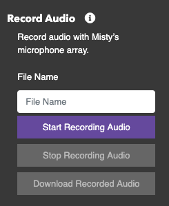 Record audio controls