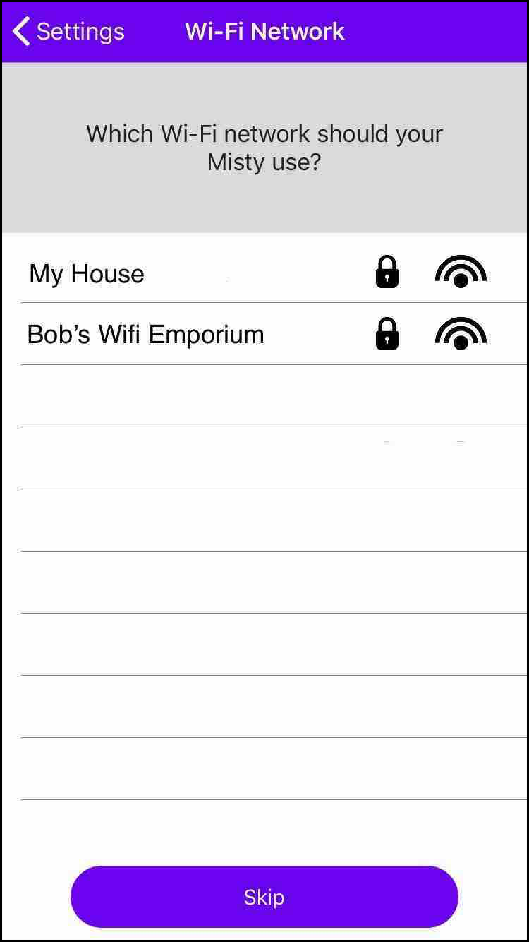 Companion App Wifi connection screen